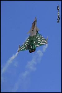 Dassault Rafale 113-IX